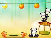 Rebotes del Panda